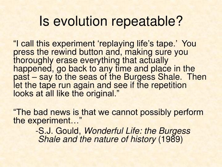 Is evolution repeatable?
