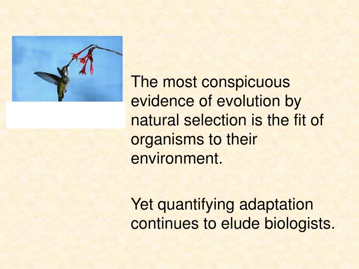 The most conspicuous evidence of evolution by natural selection is the fit of organisms to their environment.