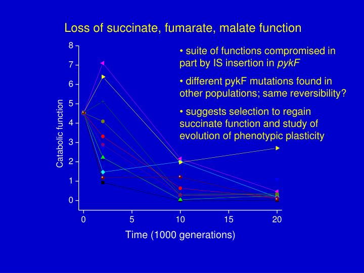 Loss of succinate, fumarate, malate function