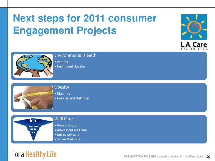 Next steps for 2011 consumer Engagement Projects