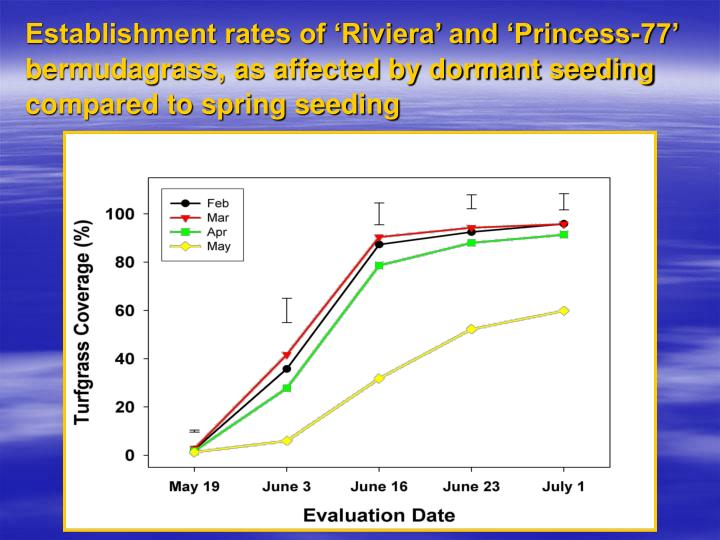 Establishment rates of 'Riviera' and 'Princess-77' bermudagrass, as affected by dormant seeding compared to spring seeding