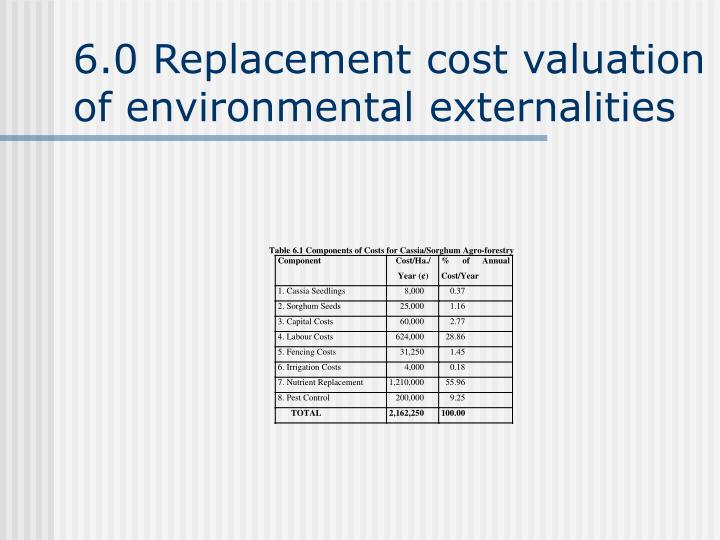 6.0 Replacement cost valuation of environmental externalities