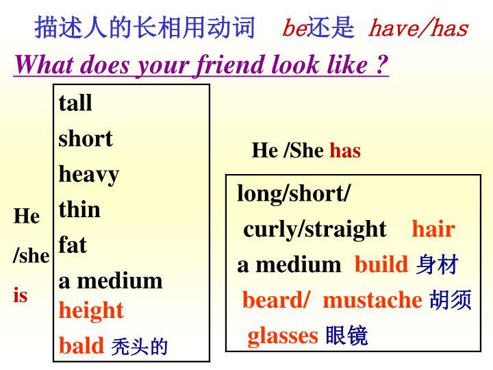 描述人的长相用动词