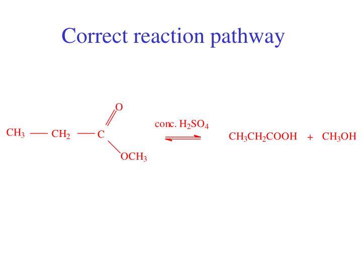 Correct reaction pathway