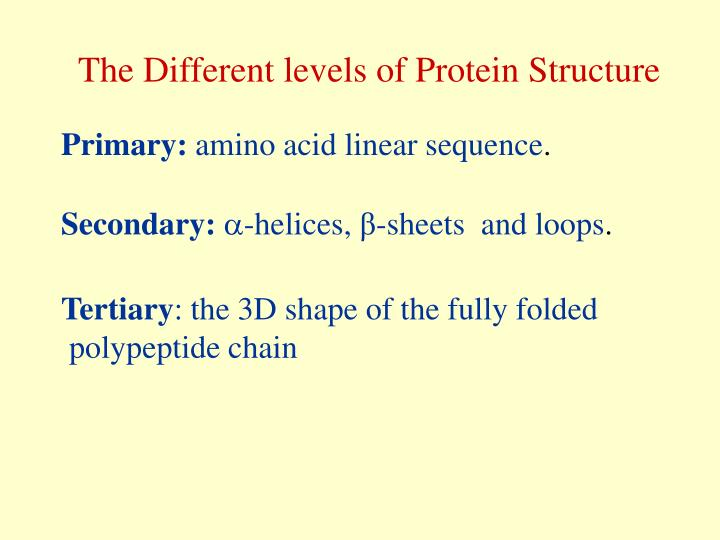 The Different levels of Protein Structure