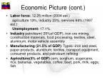 economic picture cont