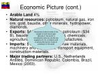 economic picture cont1