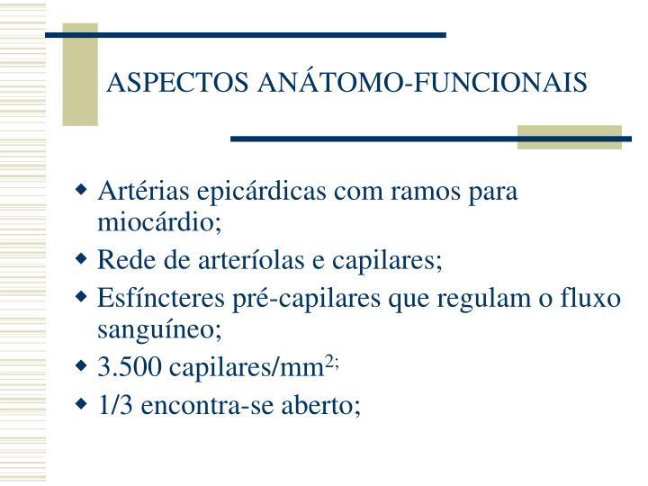 ASPECTOS ANÁTOMO-FUNCIONAIS