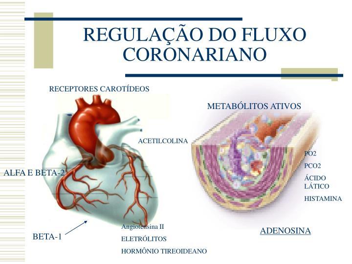 REGULAÇÃO DO FLUXO CORONARIANO