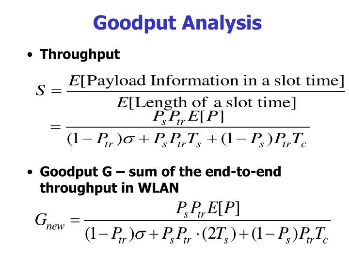 Goodput Analysis