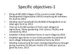 specific objectives 1