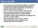 what is the cim