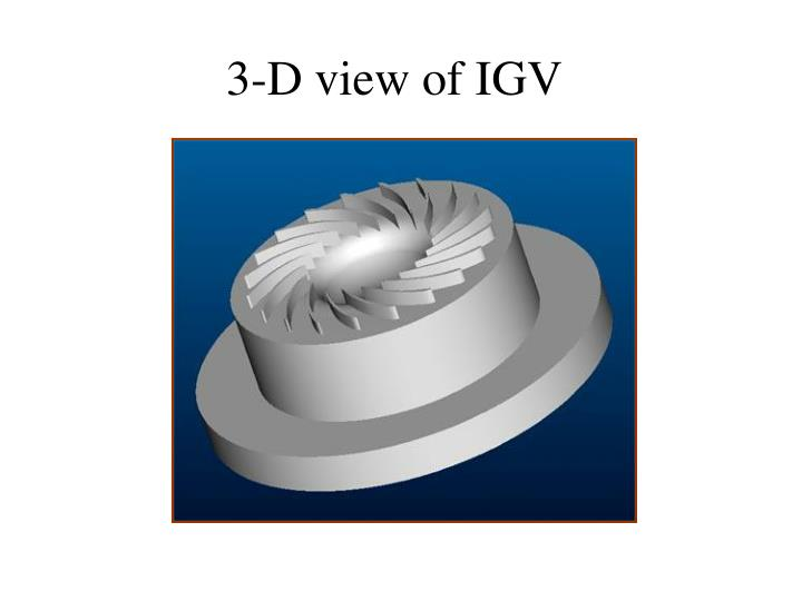 3-D view of IGV