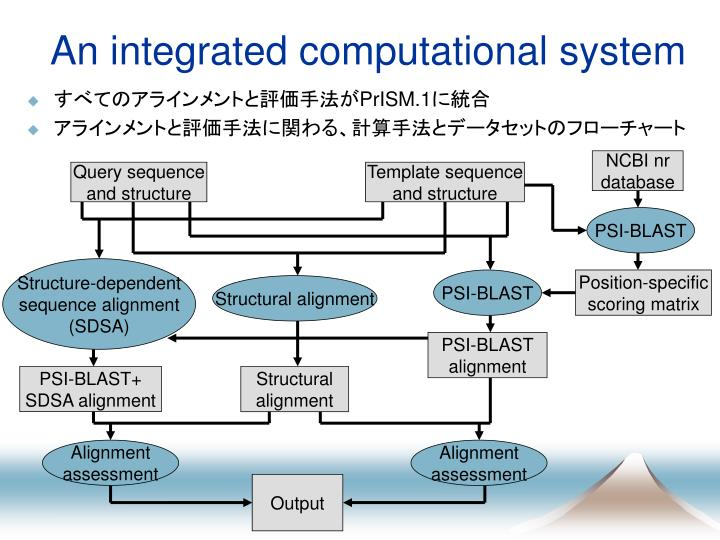 An integrated computational system