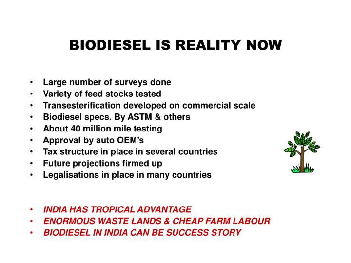 BIODIESEL IS REALITY NOW