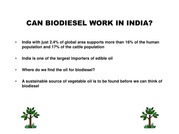 CAN BIODIESEL WORK IN INDIA?