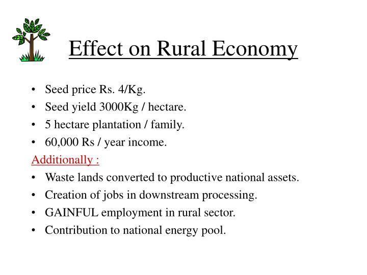 Effect on Rural Economy