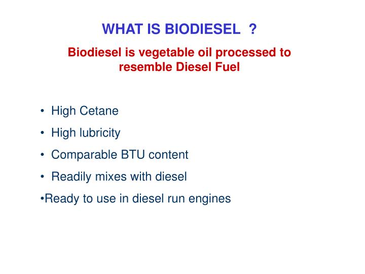 WHAT IS BIODIESEL  ?
