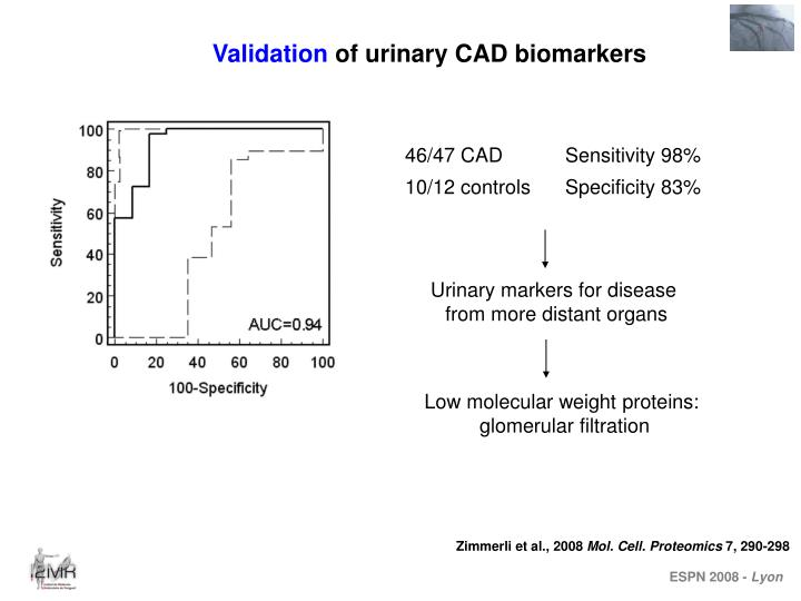 Urinary markers for disease