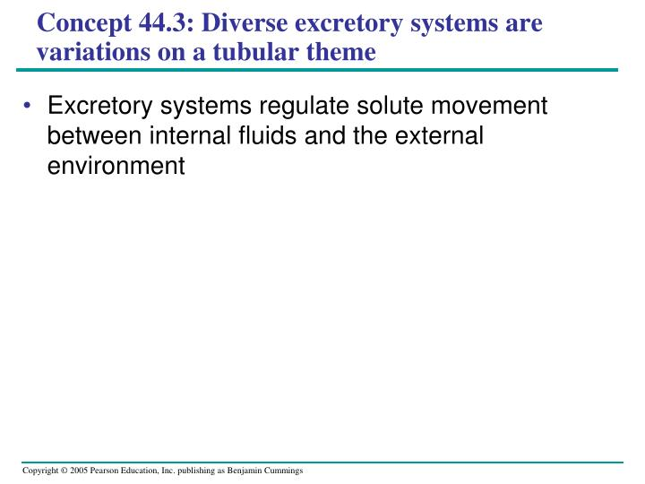 Concept 44.3: Diverse excretory systems are variations on a tubular theme
