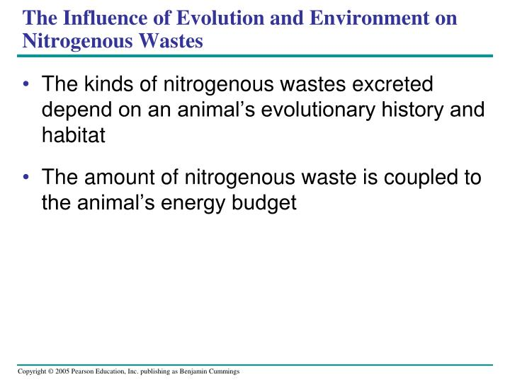 The Influence of Evolution and Environment on Nitrogenous Wastes