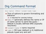 dig command format
