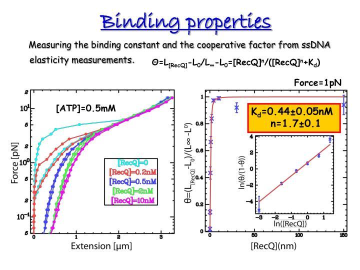 Binding properties