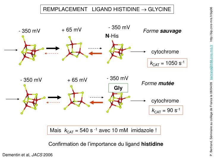 REMPLACEMENT   LIGAND HISTIDINE