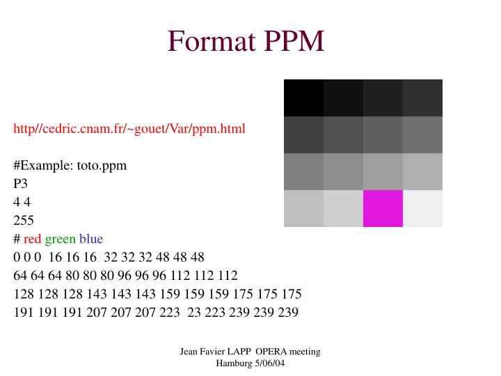Format PPM