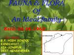fauna flora of an ideal family