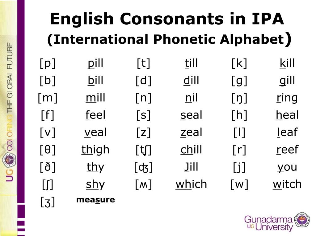 Ppt English Consonants In Ipa International Phonetic Alphabet