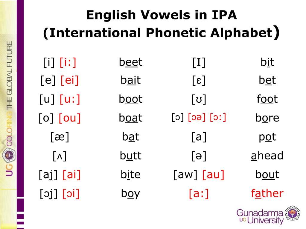 Ppt English Consonants In Ipa International Phonetic Alphabet Powerpoint Presentation Id 4771706