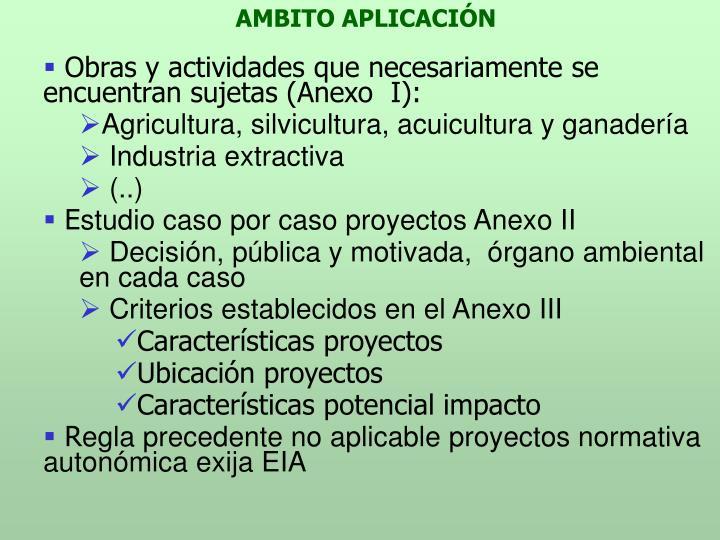 AMBITO APLICACIÓN