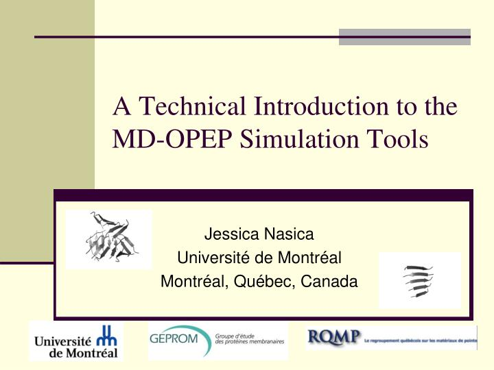 a technical introduction to the md opep simulation tools n.