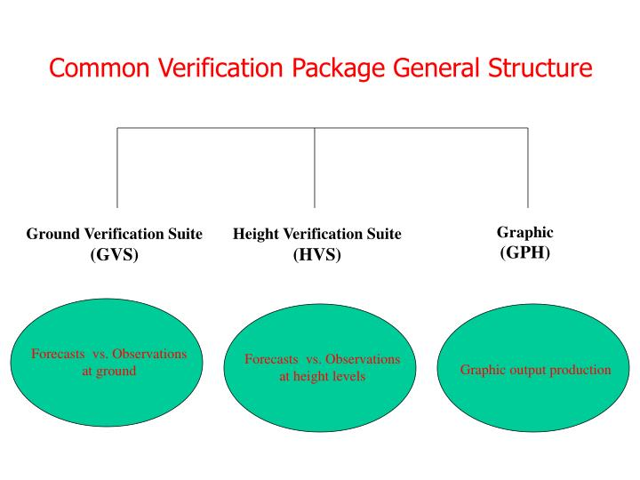 Common Verification Package General Structure