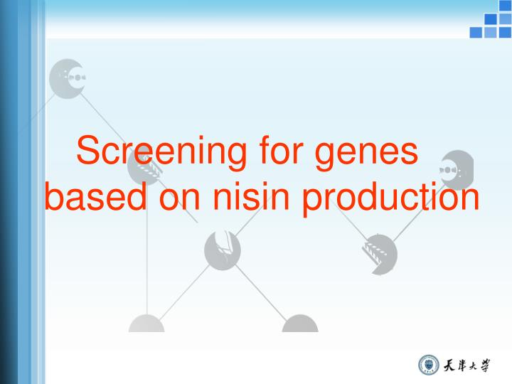 Screening for genes based on nisin production
