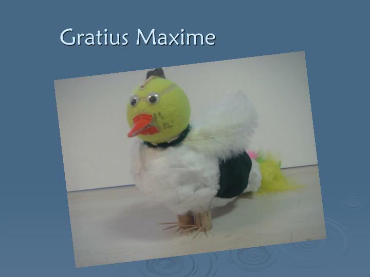 Gratius Maxime