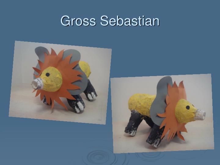Gross Sebastian