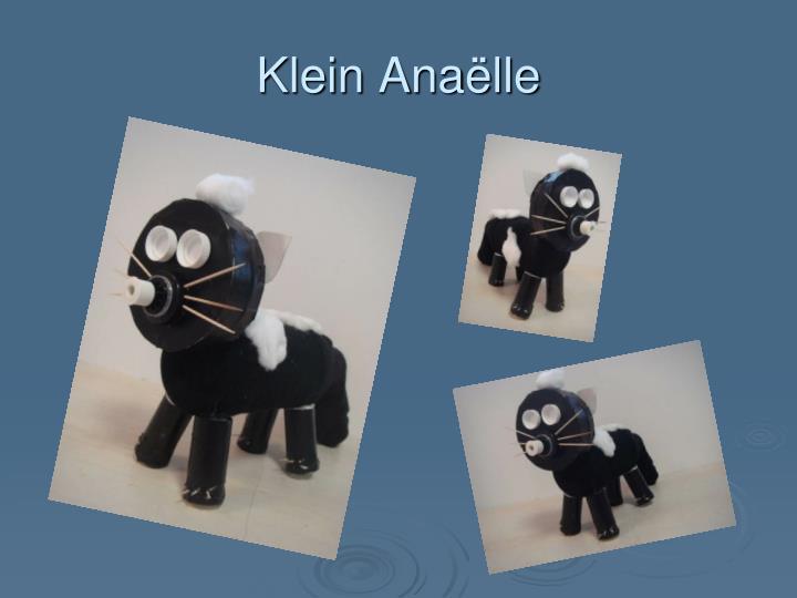 Klein Anaëlle