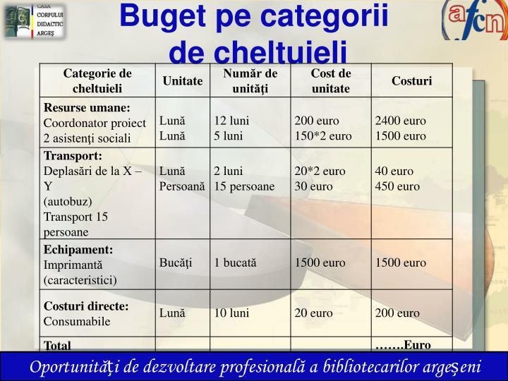 Buget pe categorii