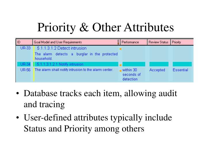Priority & Other Attributes