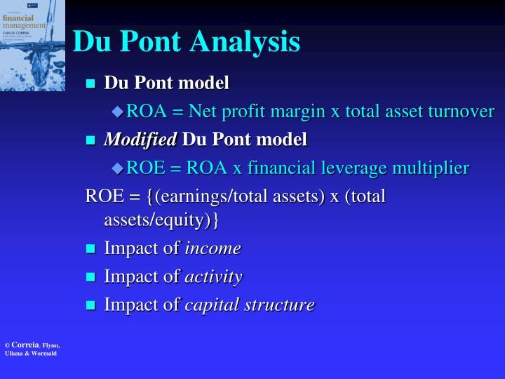 Du Pont Analysis