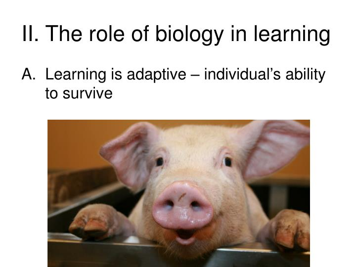 II. The role of biology in learning