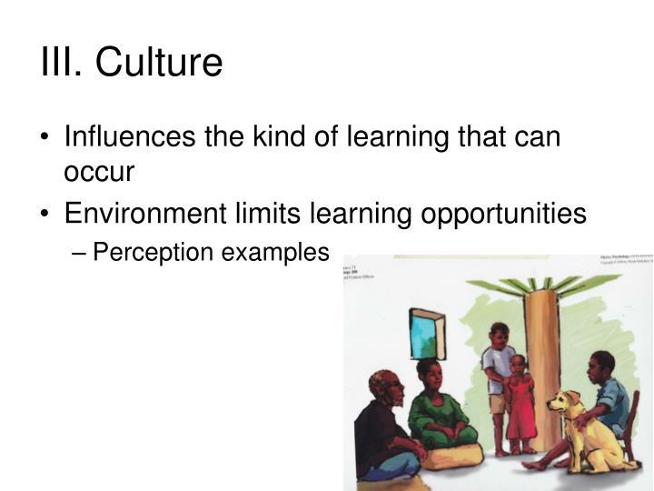 III. Culture