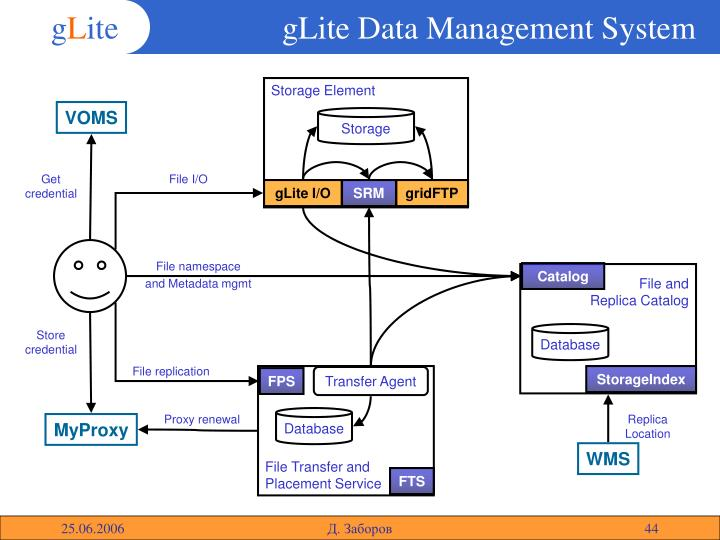 gLite Data Management