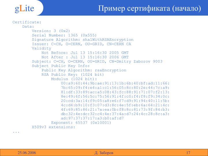 Пример сертификата (начало)