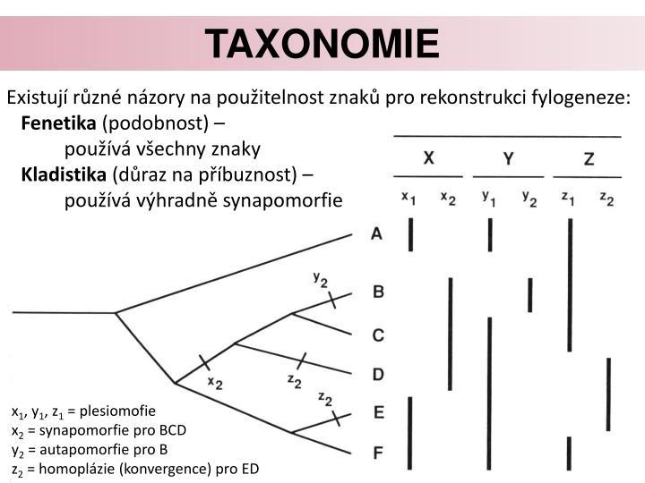Taxonomie