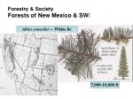 forestry society forests of new mexico sw5