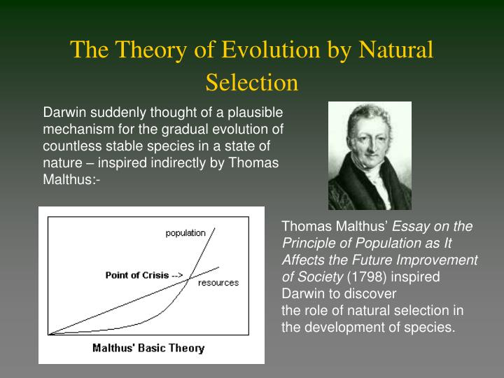 why was malthus essay on the principle of population important to darwin