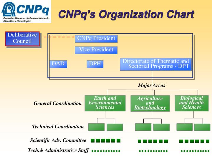 CNPq's Organization